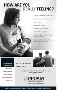 PPDAM-Poster